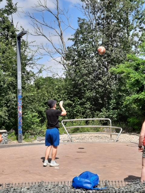 Basketball-